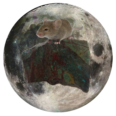 "Mouse and Avropium 5"" x 5"" Full Moon Oracle Print"