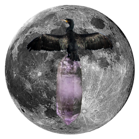 "Cormorant and Peruvian Amethyst 5"" x 5"" Full Moon Print"