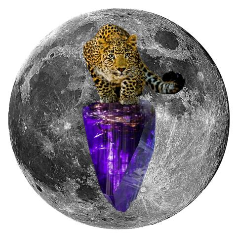 "Leopard and Tanzanite 5"" x 5"" Full Moon Oracle Print"