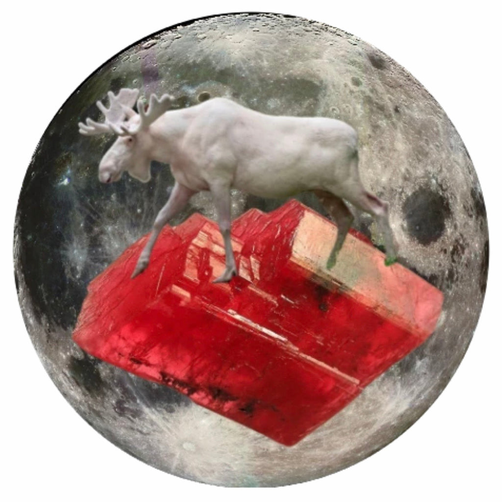 "Moose and Rhodochrosite 5"" x 5"" Moon Oracle Print"