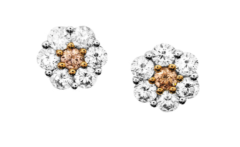 FANCY COLOUR DIAMOND DAISY EARRINGS