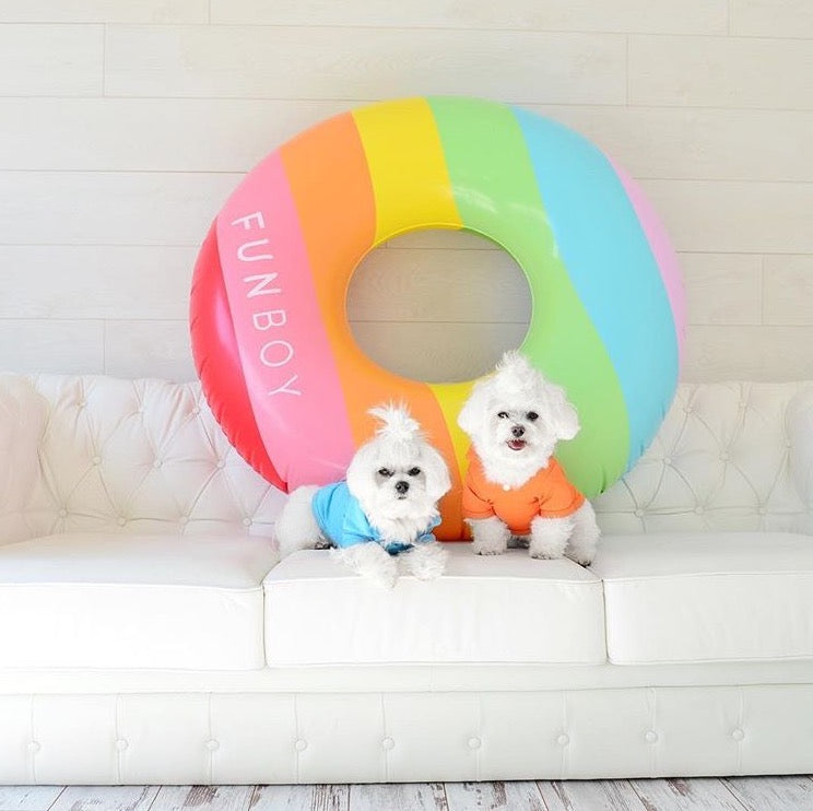 10 Adorable Dogs Whose Float (And Insta) Game is Better Than Yours