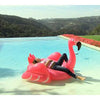 "Lisa Vanderpump ""Loves every pink inch"" of her FUNBOY Pink Flamingo float"