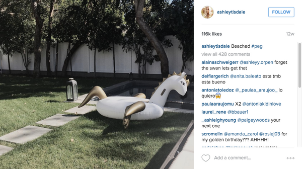 Ashley Tisdale Pegasus Unicorn Pool Float