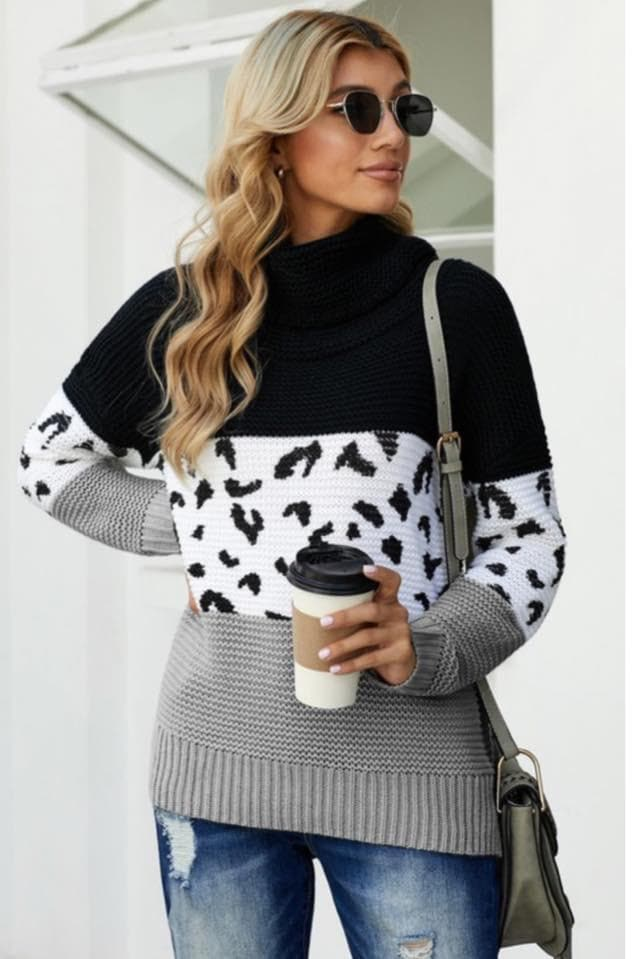 Blair Leopard Colorblock Sweater