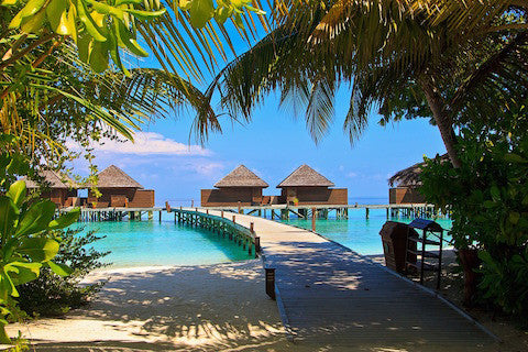 Travel to Tahiti