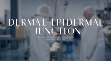 #JOELSAYS The Dermal Epidermal Junction