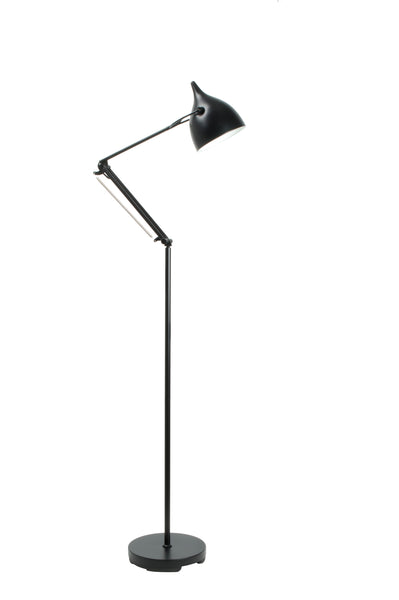 Reader Floor Lamp