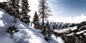 Introduction to snowshoeing: why go and what to wear