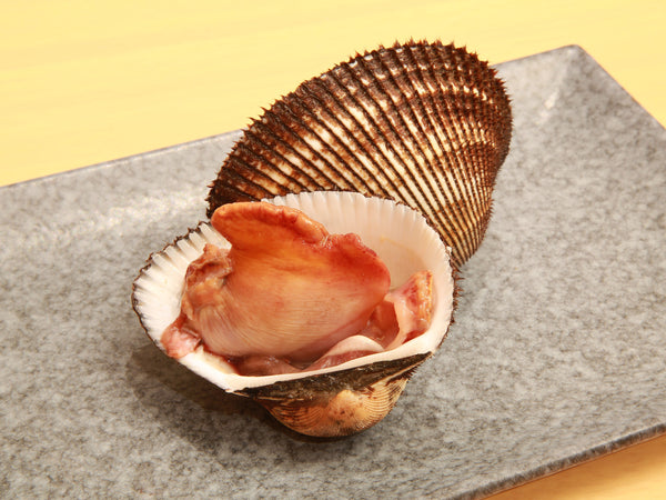 Bloody Clam  -  Akagai