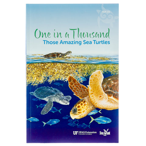 One In A Thousand Those Amazing Sea Turtles