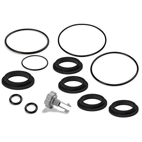 Intex Replacement Gasket and Air Release Valve Set