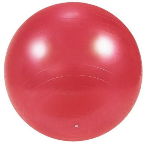 Exercise and Gym 55CM Ball with DVD