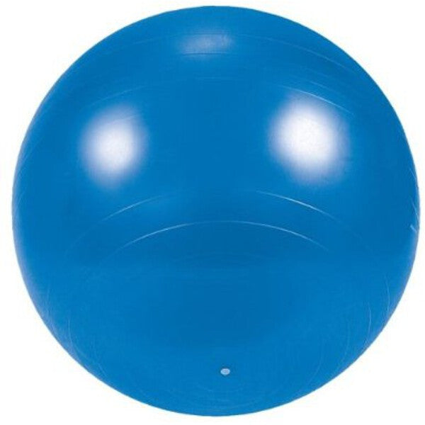 Exercise and Gym 65CM Ball with DVD