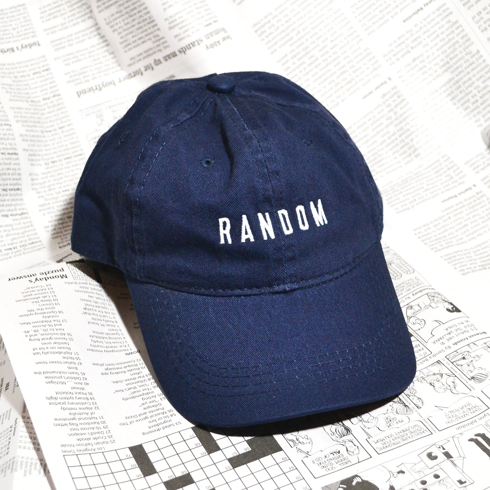 """RANDOM"" DAD HAT (NAVY)"