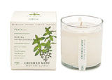 Soy Candle in Plantable Package