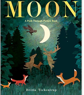 Moon - A Peek Through Picture Book