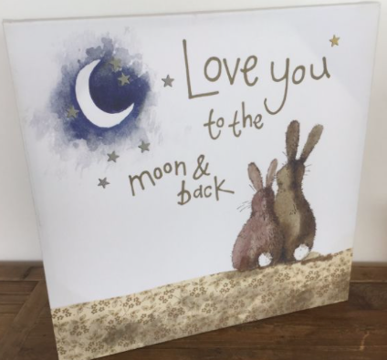 To The Moon And Back Canvas