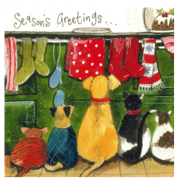 Christmas Pets Season's Greeting Boxed Cards