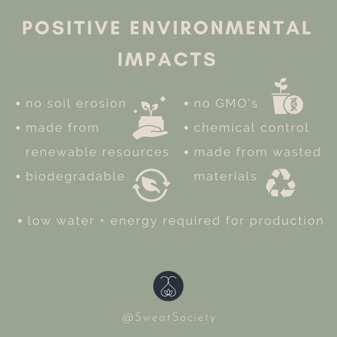 positive environmental impacts - clothing