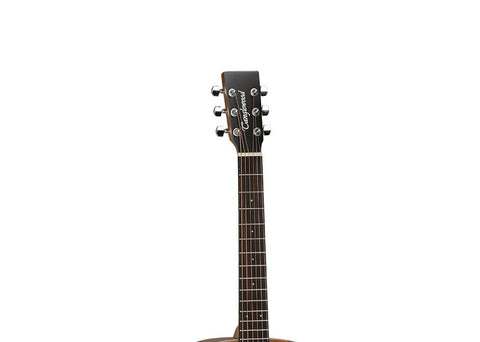 Tanglewood Winterleaf Acoustic Guitar w/ Gig Bag - Natural Satin/Rosewood- TW2T