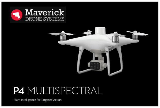 Phantom 4 Multi-spectral