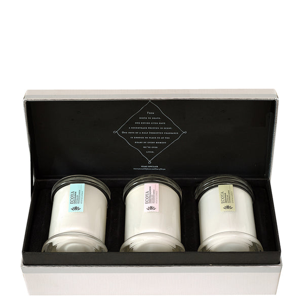 Ecoya: Mini Metro Gift Box - Luxe Gifts™  - 5