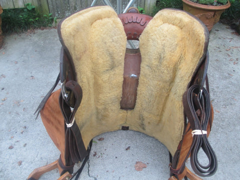 Live Oak Cowhorse Saddle Built By Mike Anders