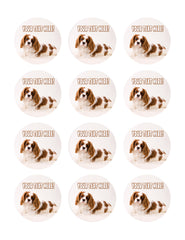 Puppy Studio Baby - Edible Cake Topper, Cupcake Toppers, Strips