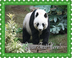Beautiful Panda Bear - Edible Cake Topper, Cupcake Toppers, Strips