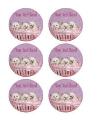 Cute Pretty Ragdoll Kittens - Edible Cake Topper, Cupcake Toppers, Strips