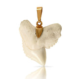 10216t - Shark Tooth Pendant