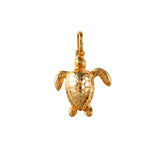 "15313 - 7/8"" Kemp's Ridley Sea Turtle - Lone Palm Jewelry"
