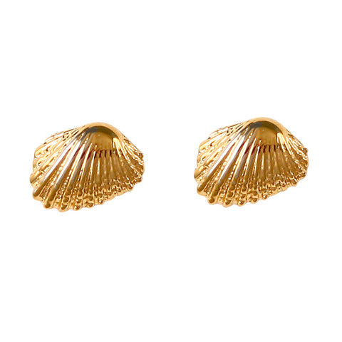 30227 - Cardita Clam Shell Post Earrings