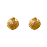 30238 - Cockle Shell Earrings