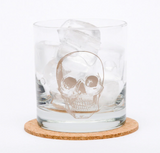 Anatomical Skull Rocks Glass