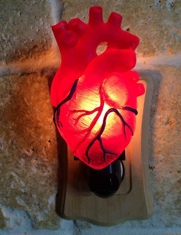 Anatomical Heart Night Light