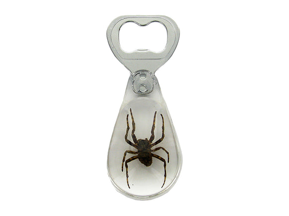 Brown Recluse Spider Bottle Opener