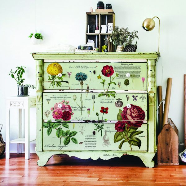 Furniture transfer Vintage Botanical - NEW