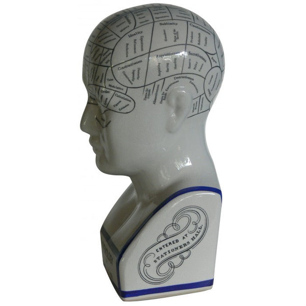 Phrenology head vintage style ceramic curious bust statue - Six Things - 3