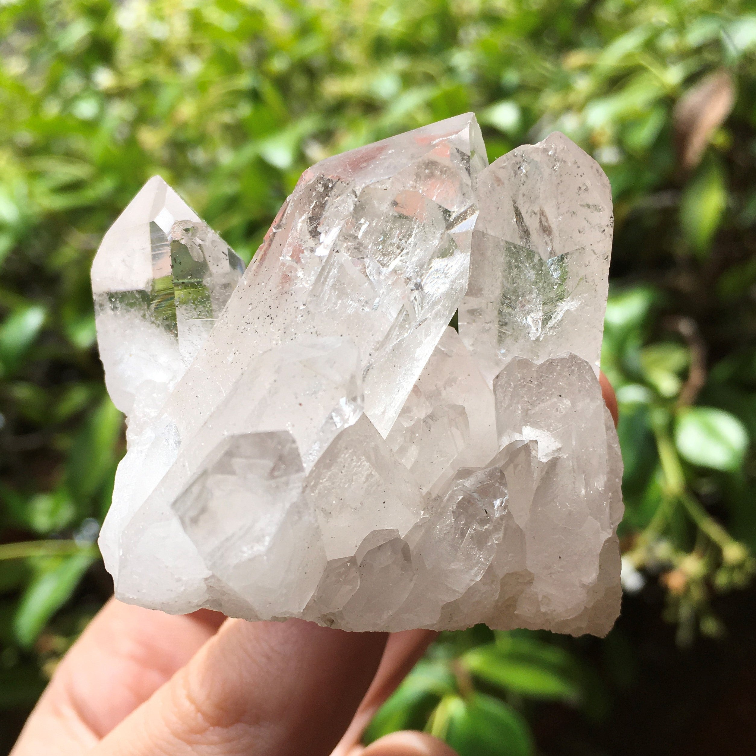 Clear quartz crystal point generator cluster - various