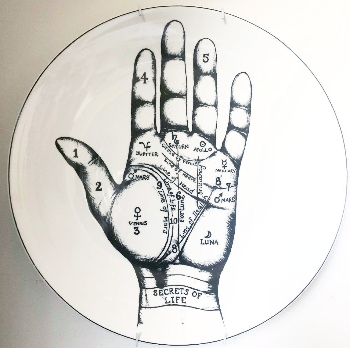 Large palmistry hand vintage curio plate / wall hanging