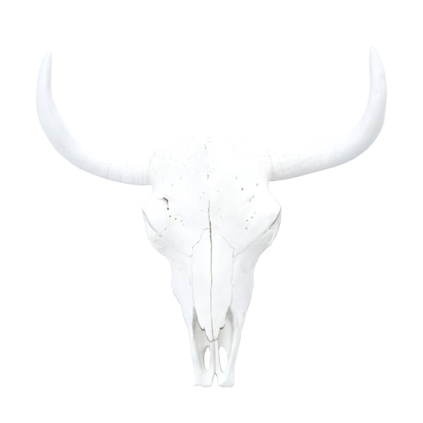 Hand painted tribal buffalo skull bull / cow skull wall hanging