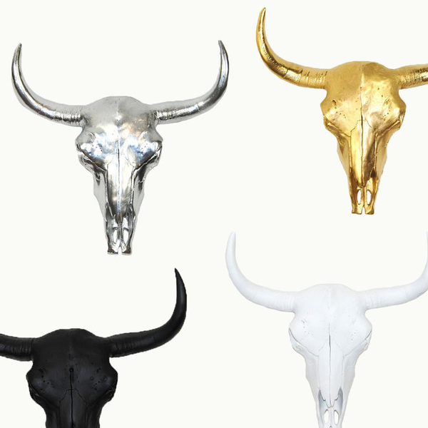 Tribal buffalo / cow skull wall hanging - Six Things - 2