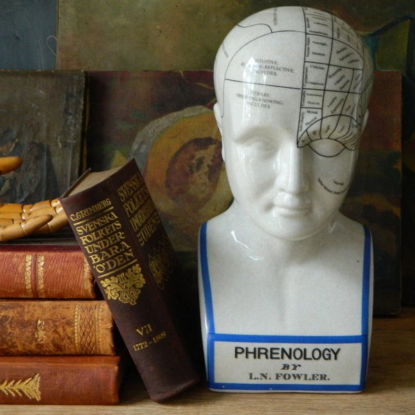 Phrenology head vintage style ceramic curious bust statue large