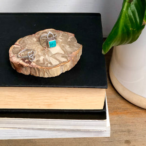 Fossilised wood slice / jurassic crystal slab / ring tray