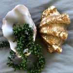 Load image into Gallery viewer, Gold and white coastal decor clam shell bowl / tray - S