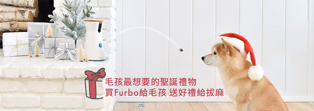 Furbo best Christmas gift for your dog 毛孩最想要的聖誕禮物