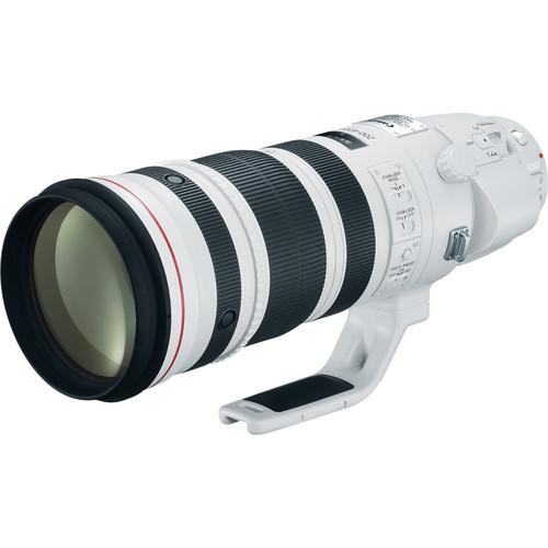 Canon EF 200-400mm f/4 L IS USM Lens Ext1.4X