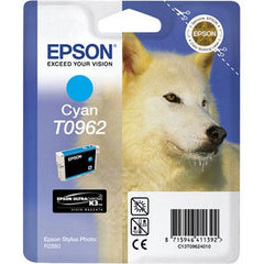 Epson Ink Cartridge T0962-66